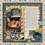 Crazy Cat Lady :: Layout by Cassie