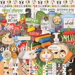 Little Pets Guinea Pig Kit by lliella designs