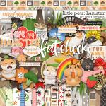 Little Pets Hamster Kit by lliella designs