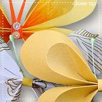 CU Butterflies 2 by lliella designs