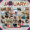 In Review: 2016-01 :: Template :: Layout by MamaBee