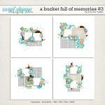A Bucket Full Of Memories #3