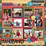 In Review: 2016 :: Template :: Layout by Amy Hoogstad
