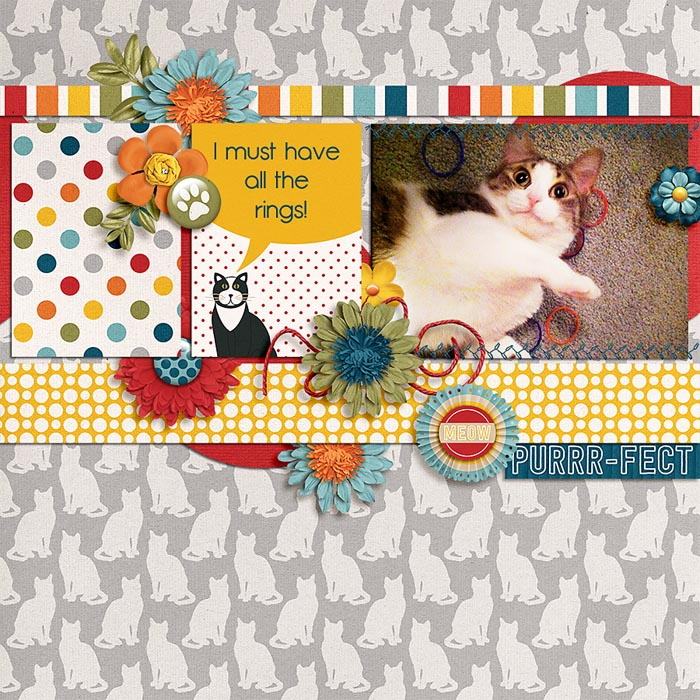 Layout by Danica
