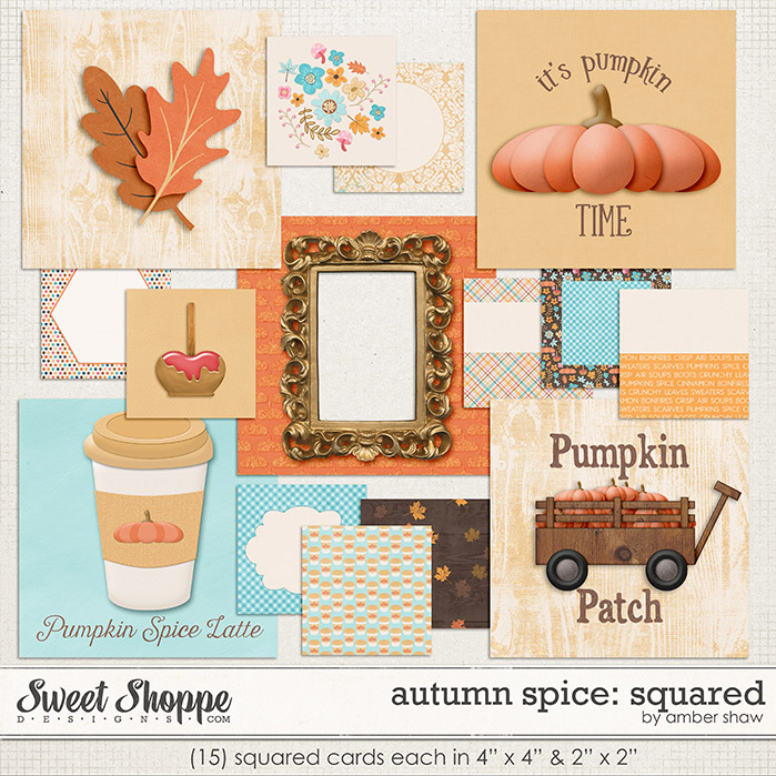 Autumn Spice: Squared by Amber Shaw