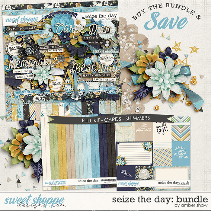 Seize the Day: Bundle by Amber Shaw
