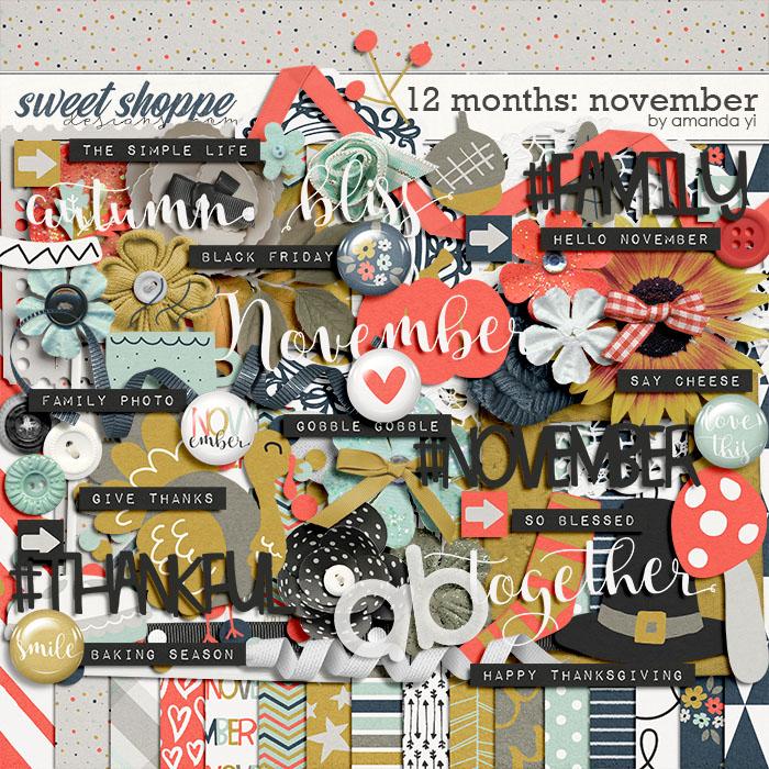12 Months: November by Amanda Yi