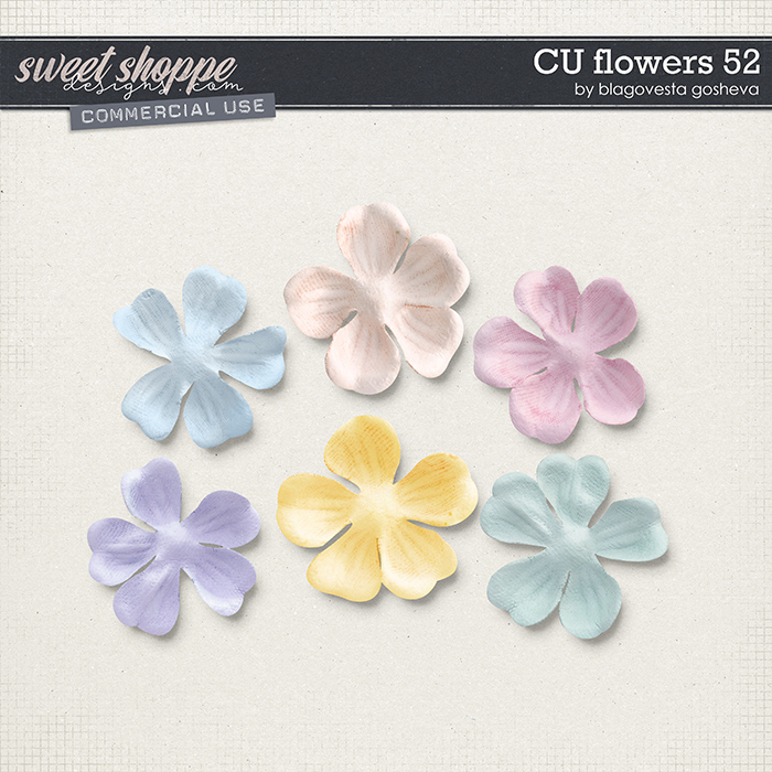 CU Flowers 52 by Blagovesta Gosheva