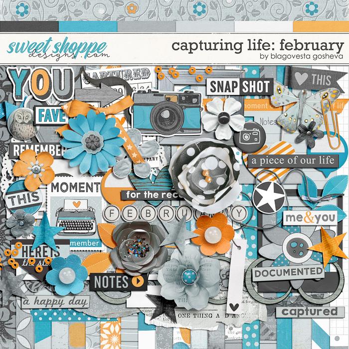 Capturing life: February by Blagovesta Gosheva
