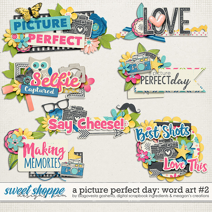 A Picture Perfect Day: Word Art Part #2 by Blagovesta Gosheva, Digital Scrapbook Ingredients and Meagan's Creations