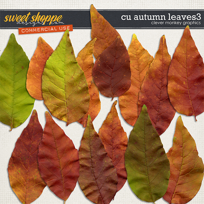 CU Autumn Leaves 3 by Clever Monkey Graphics