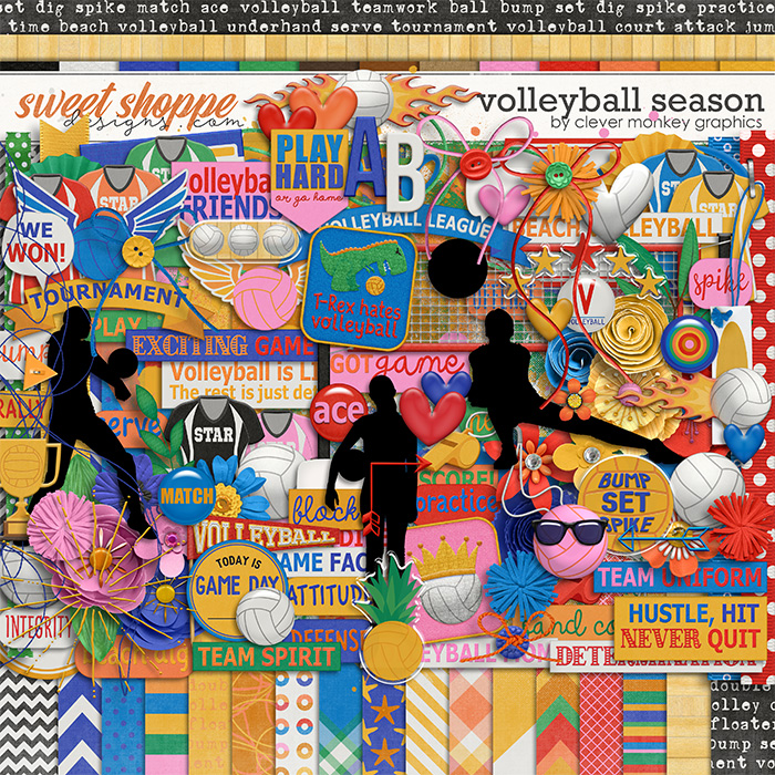 Volleyball Season by Clever Monkey Graphics