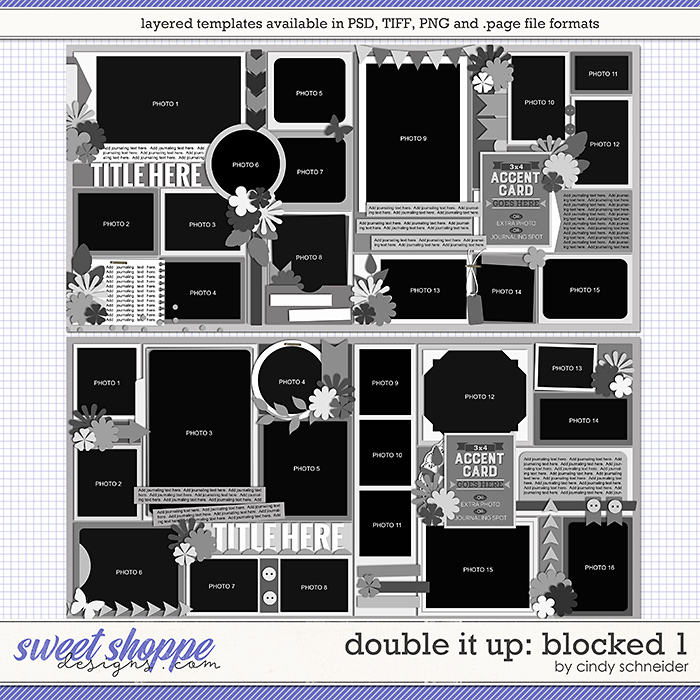 Cindy's Layered Templates - Double It Up: Blocked 1 by Cindy Schneider