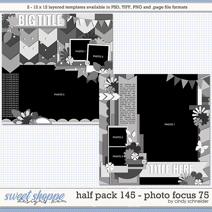 Cindy's Layered Templates - Half Pack 145: Photo Focus 75 by Cindy Schneider