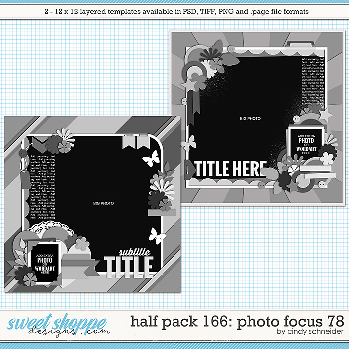 Cindy's Layered Templates - Half Pack 166: Photo Focus 78 by Cindy Schneider