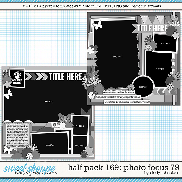 Cindy's Layered Templates - Half Pack 169: Photo Focus 79 by Cindy Schneider