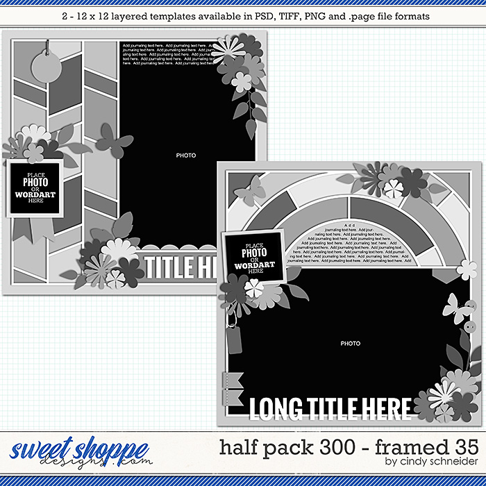 Cindy's Layered Templates - Half Pack 300: Framed 35 by Cindy Schneider