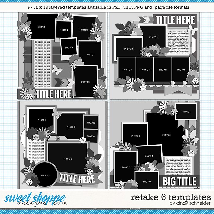 Cindy's Layered Templates - Retake Six by Cindy Schneider