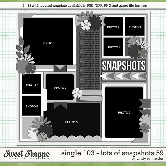 Cindy's Layered Templates - Single 103: Lots of Snapshots 59 by Cindy Schneider