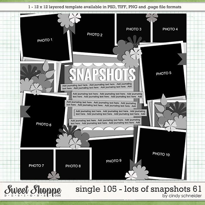 Cindy's Layered Templates - Single 105: Lots of Snapshots 61 by Cindy Schneider
