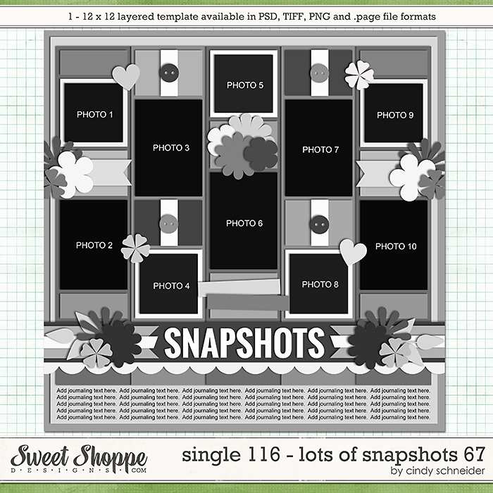 Cindy's Layered Templates - Single 116: Lots of Snapshots 67 by Cindy Schneider