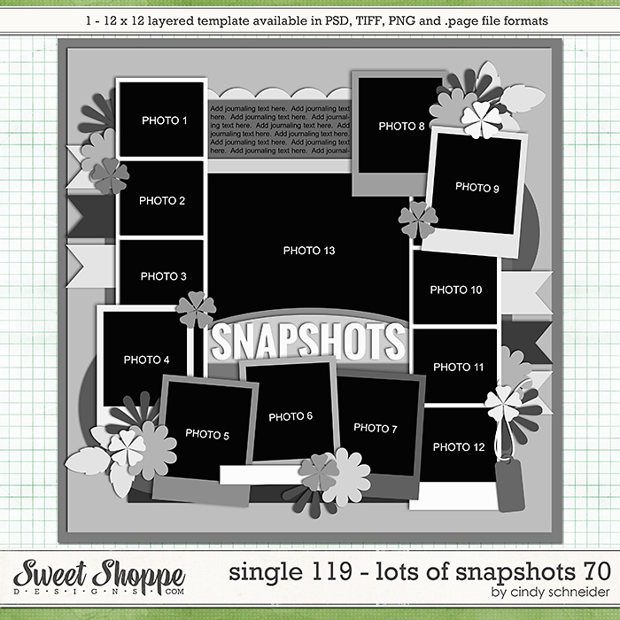 Cindy's Layered Templates - Single 119: Lots of Snapshots 70 by Cindy Schneider