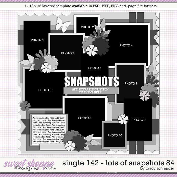 Cindy's Layered Templates - Single 142: Lots of Snapshots 84 by Cindy Schneider