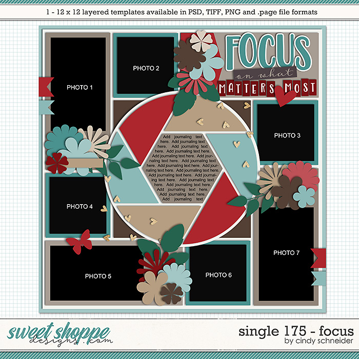 Cindy's Layered Templates - Single 175: Focus by Cindy Schneider