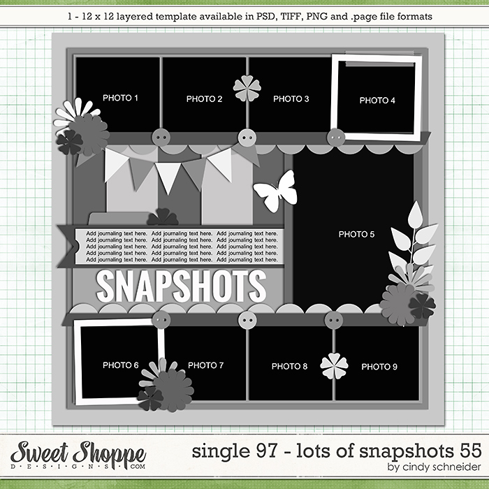 Cindy's Layered Templates - Single 97: Lots of Snapshots 55 by Cindy Schneider