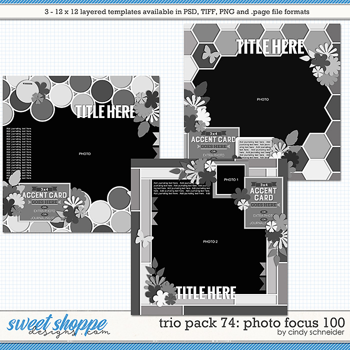 Cindy's Layered Templates - Trio Pack 74: Photo Focus 100 by Cindy Schneider