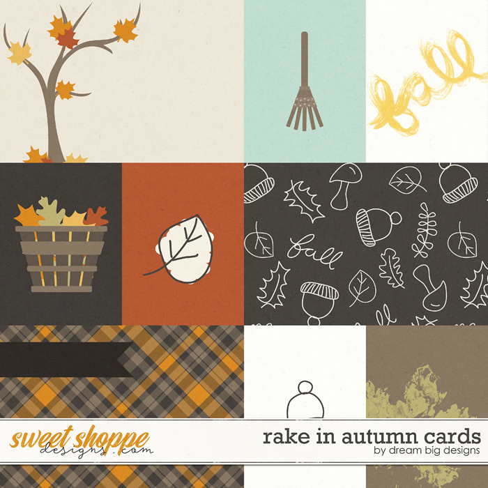 Rake In Autumn Cards by Dream Big Designs