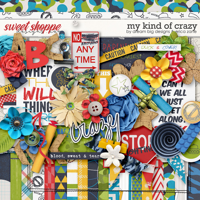 My Kind of Crazy by Dream Big Designs & Erica Zane