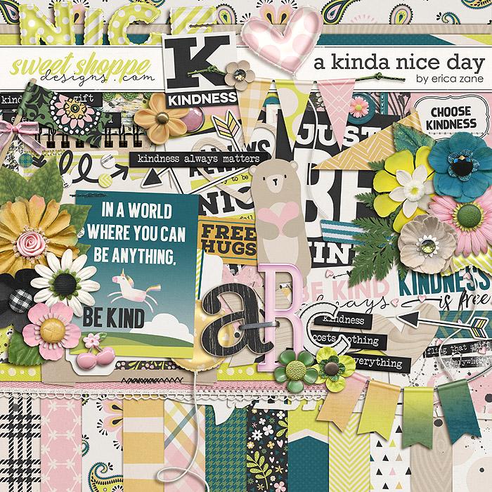 A Kinda Nice Day by Erica Zane