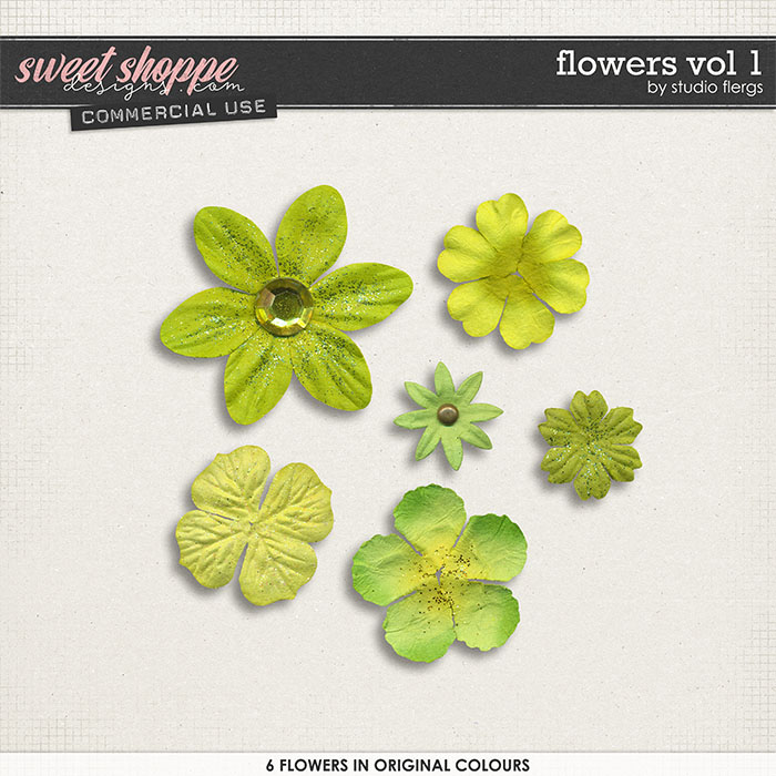 Flowers VOL 1 by Studio Flergs