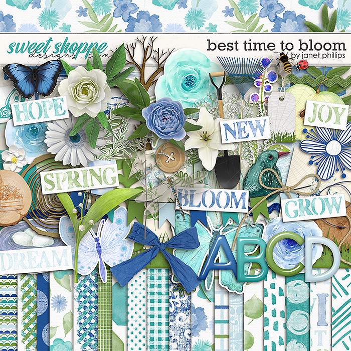 BEST TIME TO BLOOM by Janet Phillips