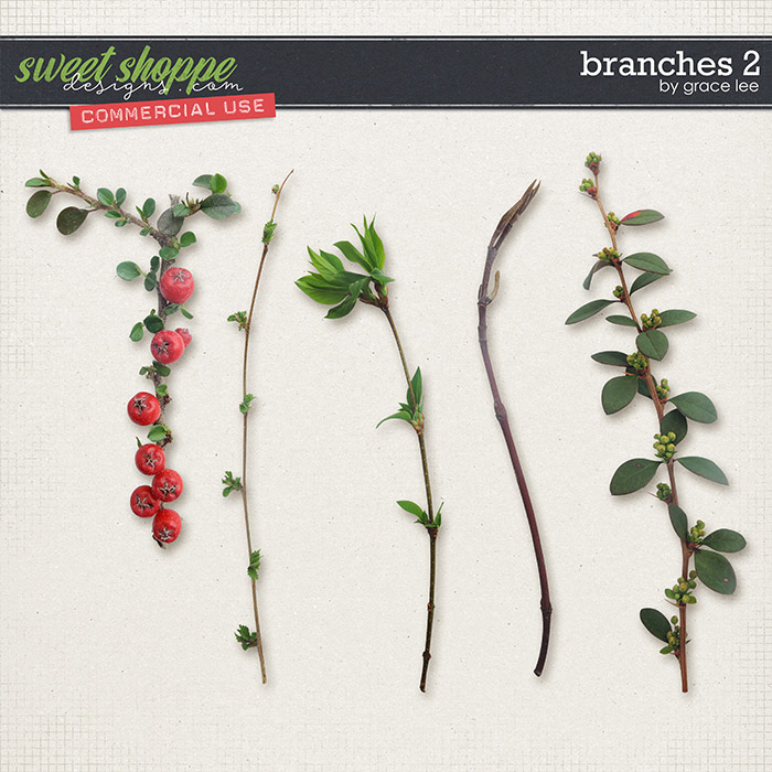 Branches 2 by Grace Lee