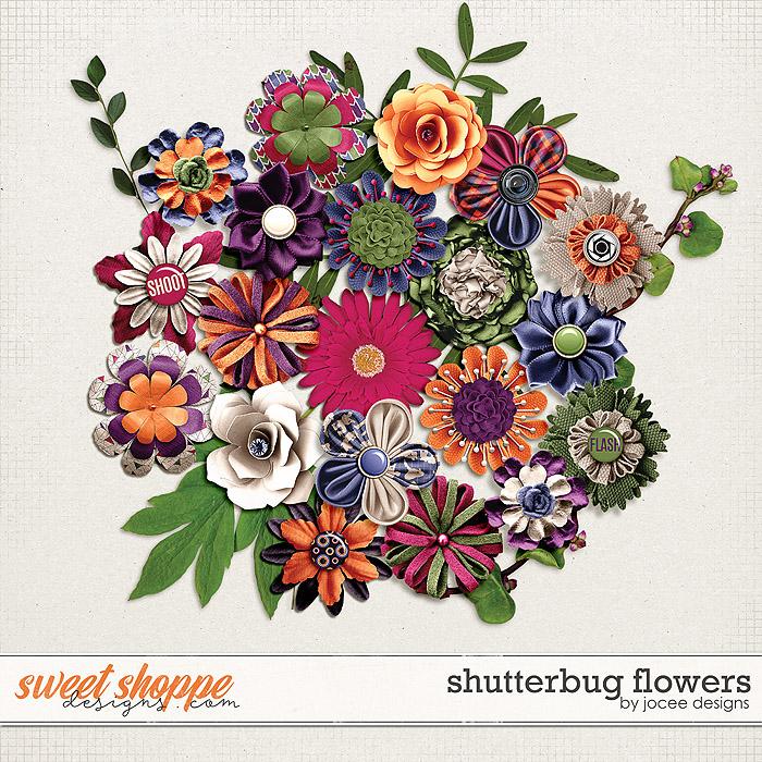 Shutterbug Flowers by JoCee Designs