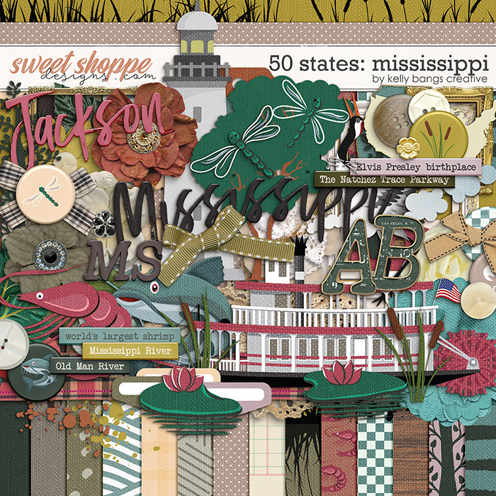 50 states: Mississippi by Kelly Bangs Creative