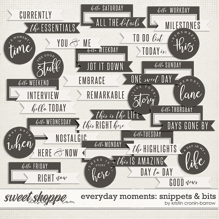 Everyday Moments: Snippets & Bits by Kristin Cronin-Barrow