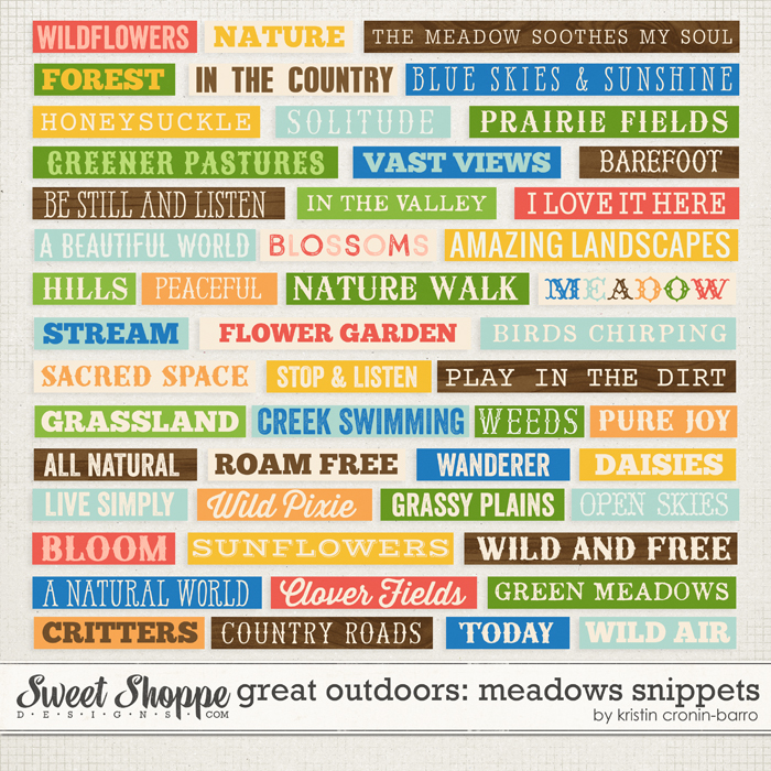 Great Outdoors: Meadows Snippets by Kristin Cronin-Barrow