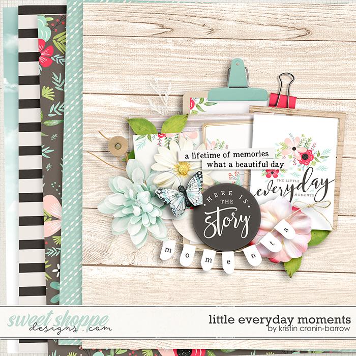 Little Everyday Moments by Kristin Cronin-Barrow