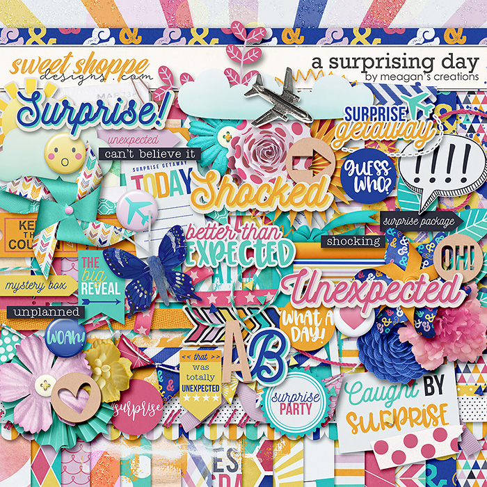 A Surprising Day by Meagan's Creations