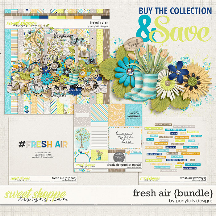 Fresh Air Bundle by Ponytails