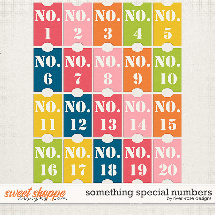 Something Special Numbers by River Rose Designs