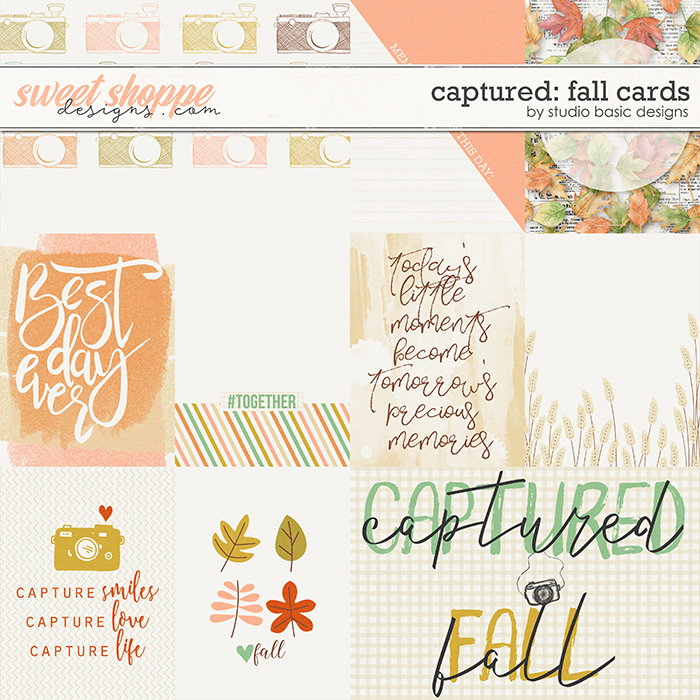 Captured: Fall Cards by Studio Basic