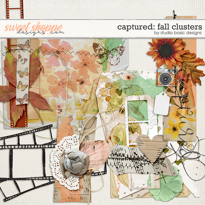 Captured: Fall Clusters by Studio Basic