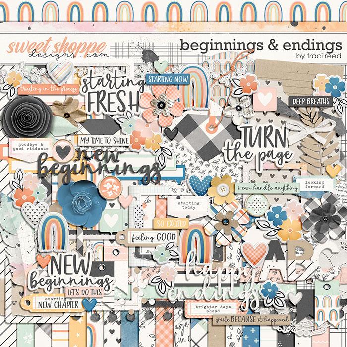 Beginnings & Endings by Traci Reed