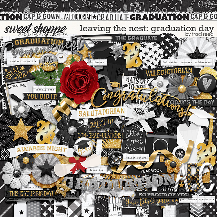 Leaving The Nest: Graduation Day by Traci Reed