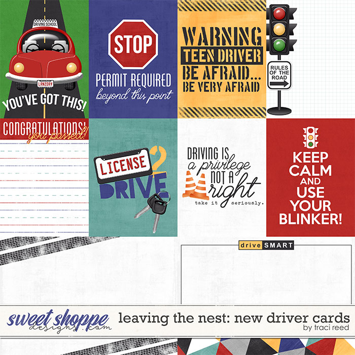 Leaving The Nest: New Driver Cards by Traci Reed