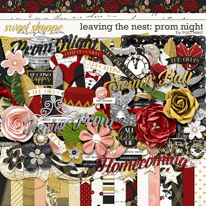 Leaving The Nest: Prom Night by Traci Reed
